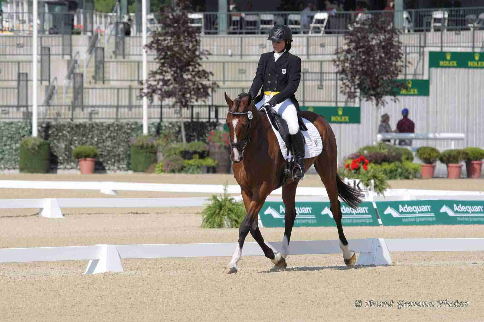 autumn schweiss dressage